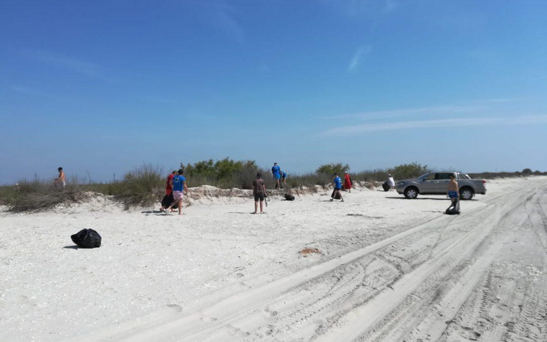 Actiune de ecologizare a plajei Vadu